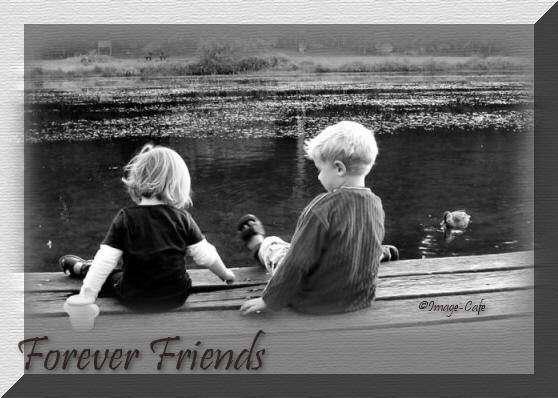 Những bài thơ hay về tình bạn tri kỷ khiến mọi người cảm động