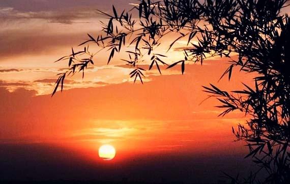 Hình ảnh hoàng hôn qua bài thơ hương chiều thật đẹp, thơ mộng
